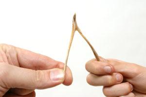 plastic wishbone