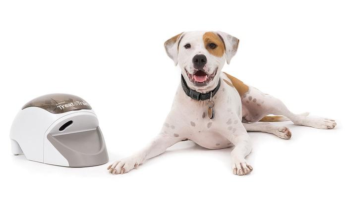 PetSafe Treat & Train Remote Dog Trainer