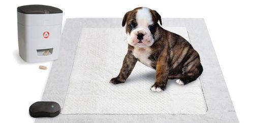 pavlovian puppy potty trainer