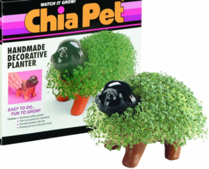 Chia Pet by Joe Pedott