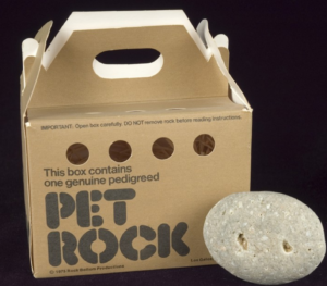 the pet rock invention