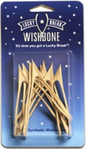 Plastic Wishbone by Ken Ahroni