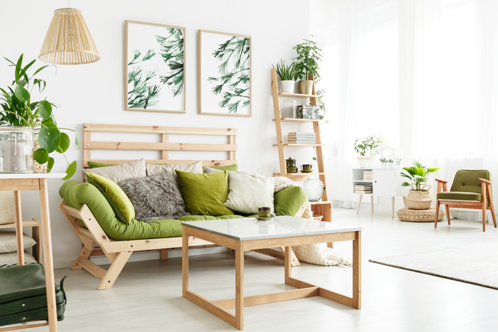 Natural apartment with green couch