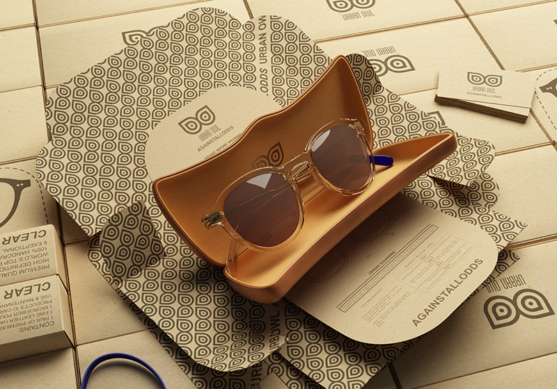 Sunglasses crowdfunding campaign prototype
