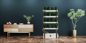 Zeal hydroponic system